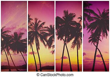 tropicais, pôr do sol, palma, árvores