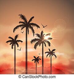tropicais, palma, paisagem, árvores