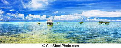 tropicais, panorama