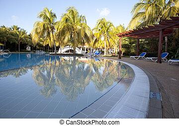 tropicais, recurso, instagram, piscina, efeito