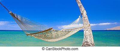 tropicais, rede, em, havaí