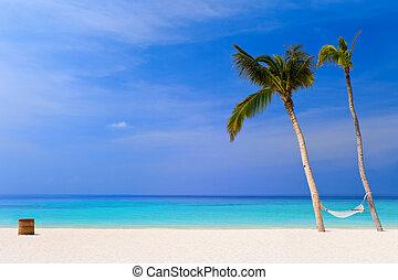 tropicais, rede, praia