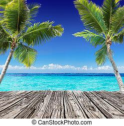 tropicais, seascape, prancha, madeira