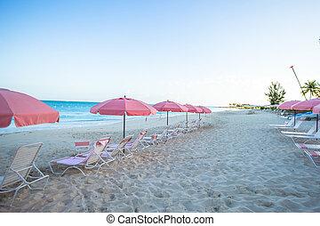 tropicais, vazio, paraisos , praia, arenoso, vista
