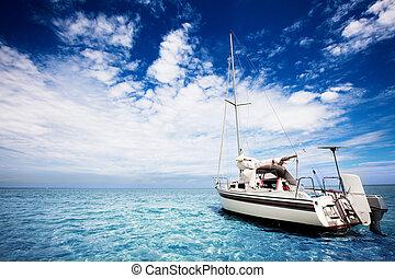 tropicais, velejando