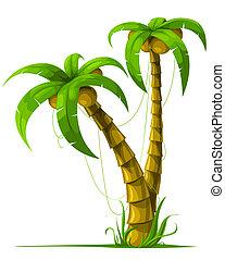 tropical, árboles de palma, aislado, blanco
