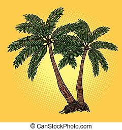 tropical, árboles de palma