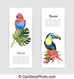tropical, acuarela, banderas, conjunto, aves