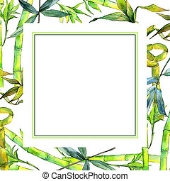 Tropical  bamboo tree frame in a watercolor style.