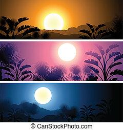 tropical, banderas, conjunto, paisaje, sol, luna, y, palma, árboles.