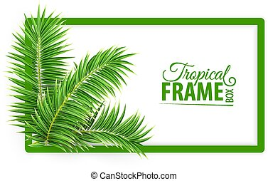 Tropical banner frame. Design layout. Green palm leaves. Vector.