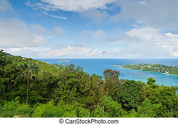Tropical bay vista