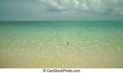 Sandy tropical beach and blue sea. Summer and travel vacation concept.