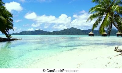 tropical beach and bungalows in french polynesia - travel,...