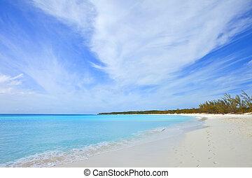 tropical beach and footprints - footprints on tropical beach...