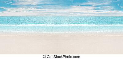 Tropical beach and ocean