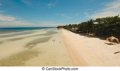 Tropical beach and turquoise sea Philippines,Bohol - Aerial...