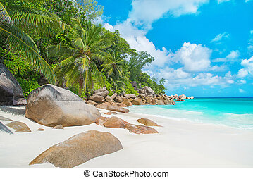 Tropical beach Anse Georgette at island Praslin, Seychelles...
