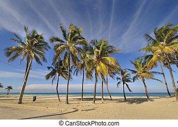 Tropical beach at Santa maria del mar, cuba - View of...