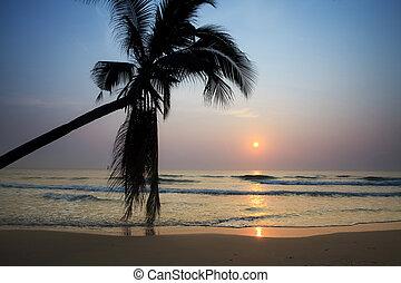 Tropical beach at sunrise