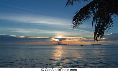 Tropical beach at sunset with palm tree