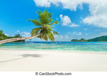 Tropical beach Baie Lazare at island Mahe, Seychelles - ...