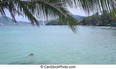 Tropical beach behind palm tree leaves
