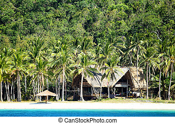 Tropical beach in El Nido, Philippines - White sand beach in...