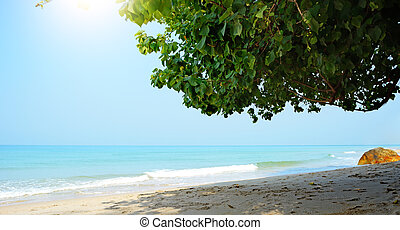 Tropical beach. Koh Chang