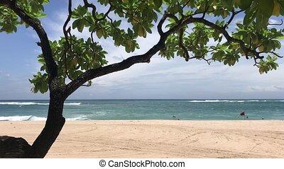 Tropical beach of Bali island, Indonesia. Nusa Dua. Asia.