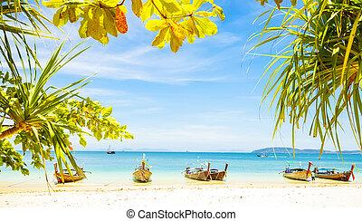 Tropical beach on Phi Phi island