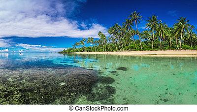 Tropical beach on Samoa Island with palm trees