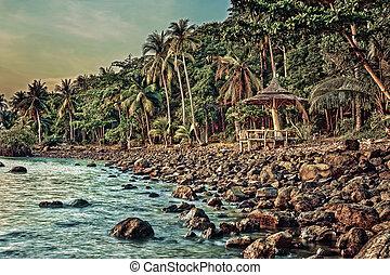 Tropical beach on the island
