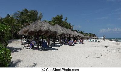 Tropical Beach Palapa