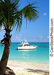 Tropical beach - Palm tree and fishing boat at tropical ...