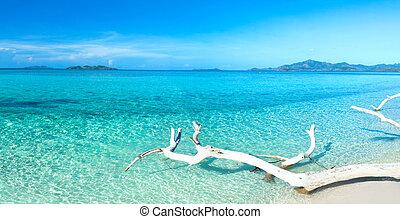 Tropical beach panorama - Tropical beach Malcapuya at summer...