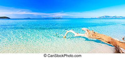Tropical beach panorama