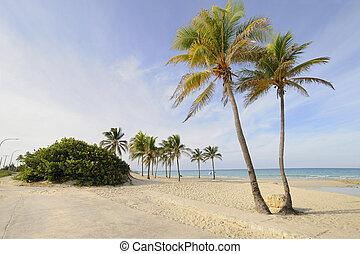 Tropical beach paradise - Santa Maria, east Havana, cuba. -...