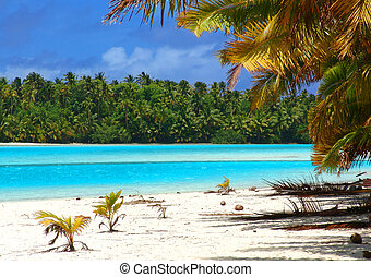 Tropical Beach Scene - Tropical Beach in the Cook Islands