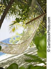 tropical beach: hammock in a garden near the sea