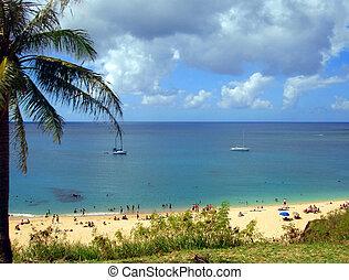 Tropical Beach - North Shore, Oahu, Hawaii