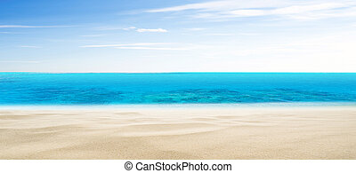 Tropical beach summer background
