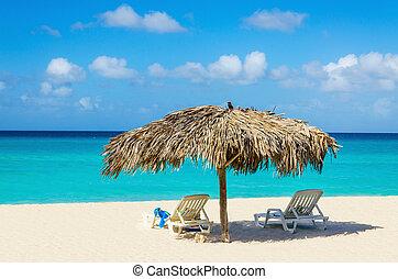 Tropical beach, sunbeds and palm tree umbrellas - Amazing ...