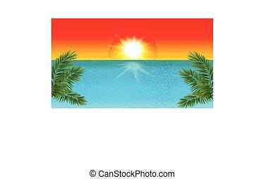 Tropical beach template