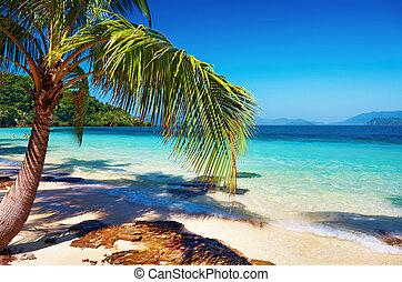 Tropical beach, Thailand - Tropical beach, Wai island,...