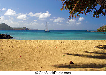 Tropical Beach  - tropical beach on st.Lucia-Caribbean