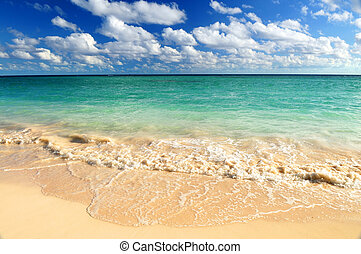 Tropical beach - Tropical sandy beach with advancing wave ...