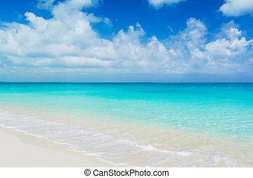 Tropical Beach - Tropical White Sand Beach and Sea, Turks ...