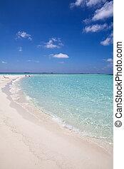 tropical beach white sand