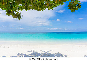 Tropical beach with blue Sky and sea.